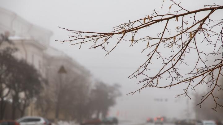 Волгоградскую область после долгих выходных затянет белой пеленой