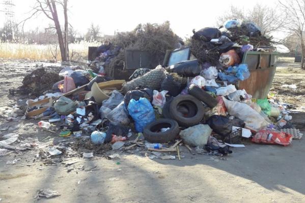 Волгоградцы продолжают жаловаться на проблемы с вывозом мусора в регионе