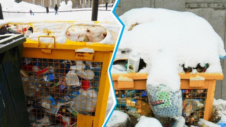 Вторая часть мусорного коллапса в Новосибирске: раздельные отходы тоже перестали вывозить