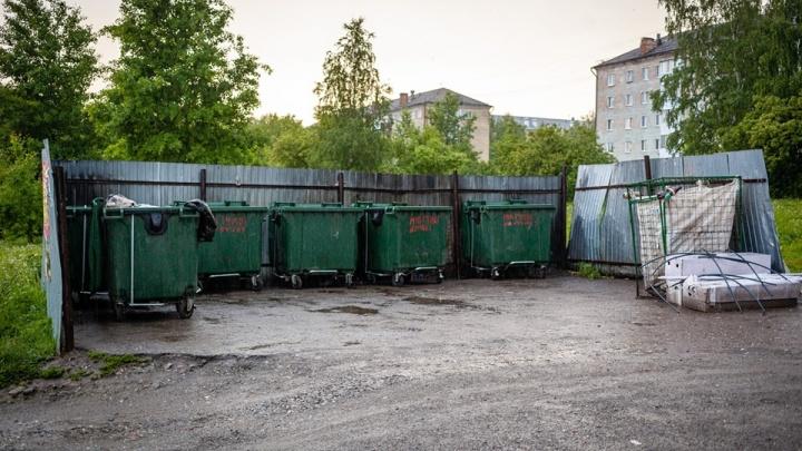 После прямой линии с Владимиром Путиным из Верхней Салды вывезли весь мусор