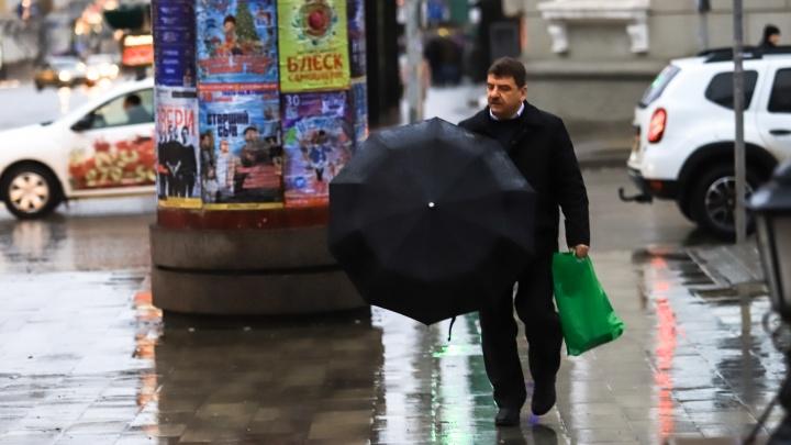 Зима не близко: в Ростове резко потеплеет на этой неделе