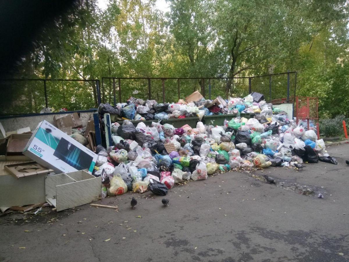 Санврачи и прокуроры обязали мэрию убрать мусорные свалки в частном секторе Екатеринбурга