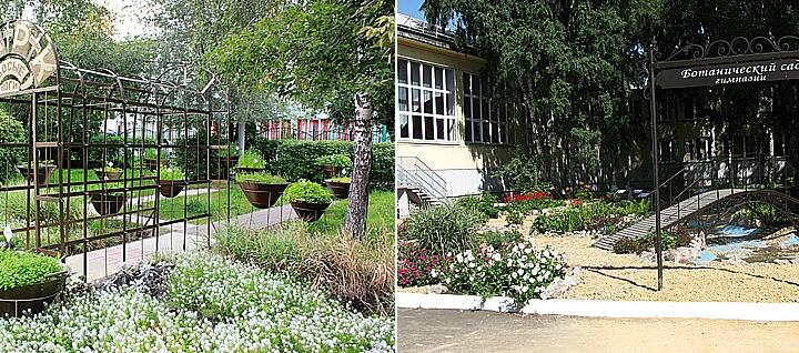 Ботанический сад и сенсорный парк с пряными травами: какую красоту создают возле школ Красноярска
