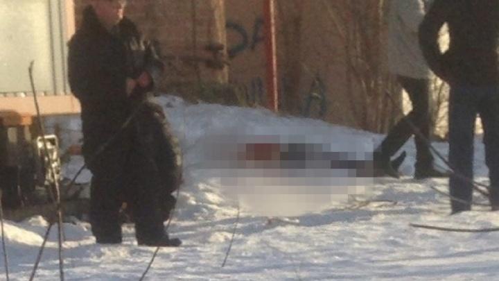 В Червишево разбился насмерть 15-летний подросток