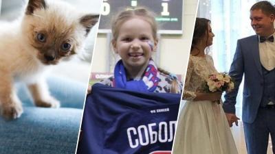 Котёнок Мостик и бабушка-опекун: вспоминаем 10 самых добрых историй за этот год