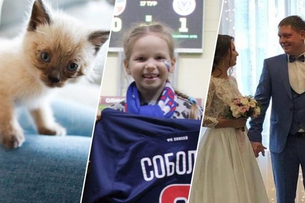 В Красноярске за последний год произошло много добрых событий, мы вспомнили самые-самые
