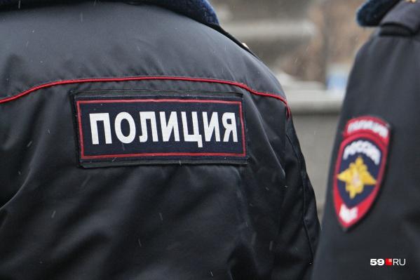 Полицейские задержали грабителя