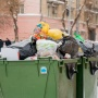 В Самарской области собираются увеличить тариф на вывоз мусора