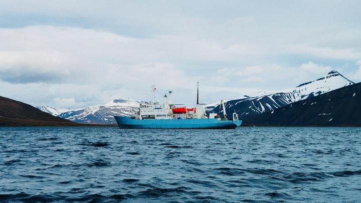 Как попасть в Арктику? В Архангельске объявили набор в экспедицию «Плавучего университета»