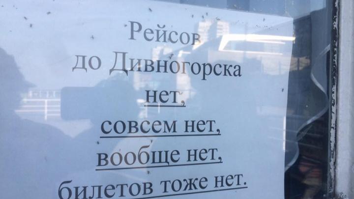 «Рейсов нет, совсем нет»: красноярцы возмутились объявлению об отсутствии теплохода до Дивногорска