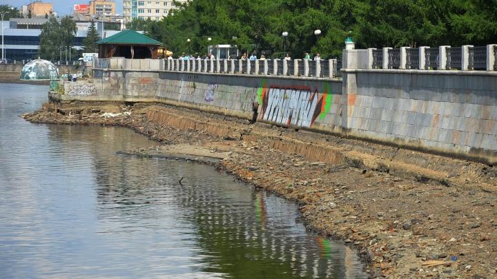 Волонтёров надо в два раза больше: в Екатеринбурге ради чистки пруда максимально спустили воду