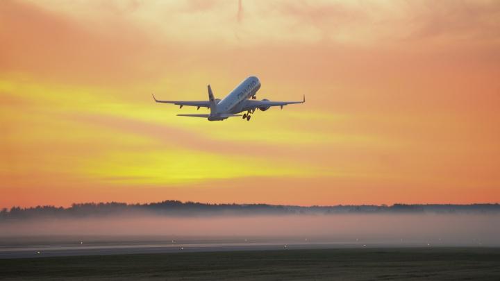 Небо, самолёт, рассвет: утром десятки людей с фотокамерами снимали взлёты и посадки в Кольцово