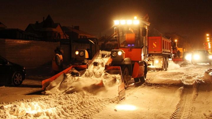 Омич пожаловался на дорожников, которые повредили саженцы во время уборки снега