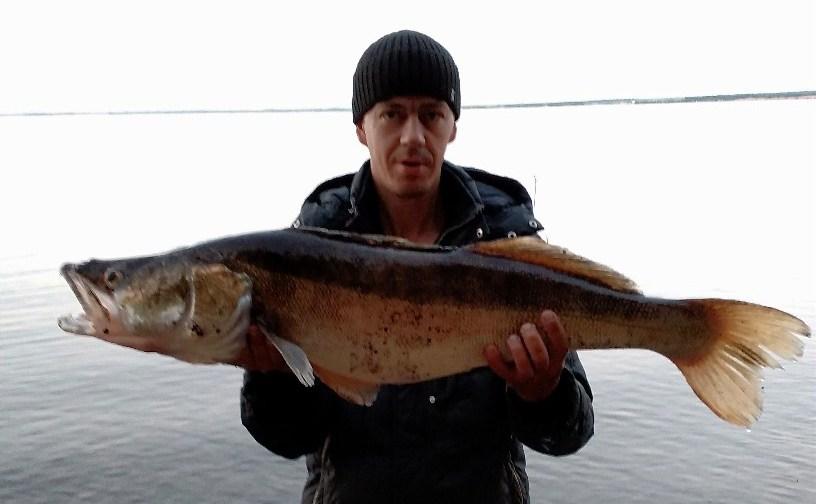Огромную рыбу пришлось вываживать из реки около 40 минут