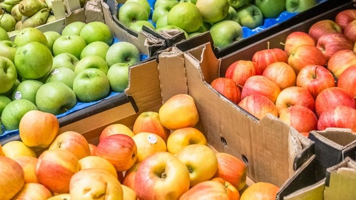 В Самаре заблокируют сайты по продаже фруктов, овощей и мяса из Польши и Испании