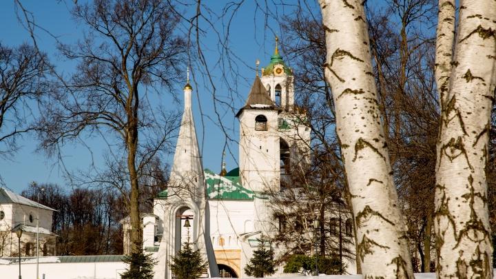 Зима уже не вернется: Сретенье предсказало, какой будет весна в Ярославле