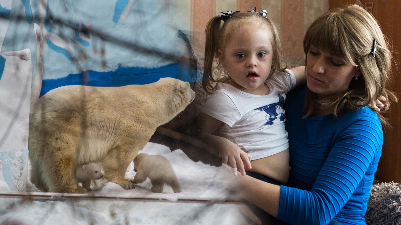 Медицинский скандал, первые клещи и прогулка белых мишек в зоопарке. Главное за неделю