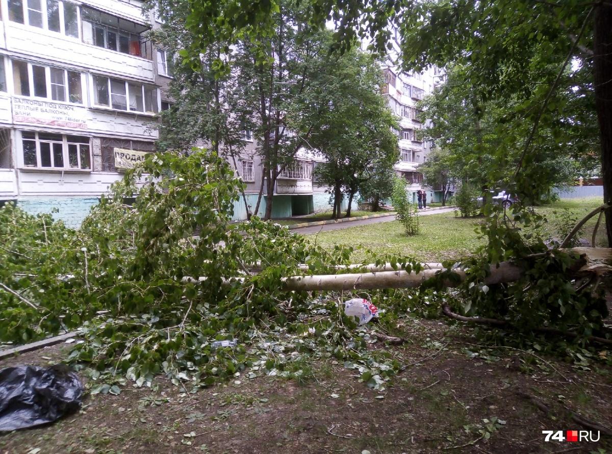 Трагедия произошла в понедельник у дома №24 на улице Солнечной