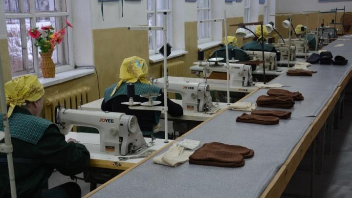 Исправительные учреждения Курганской области готовы отдать площади под новое производство
