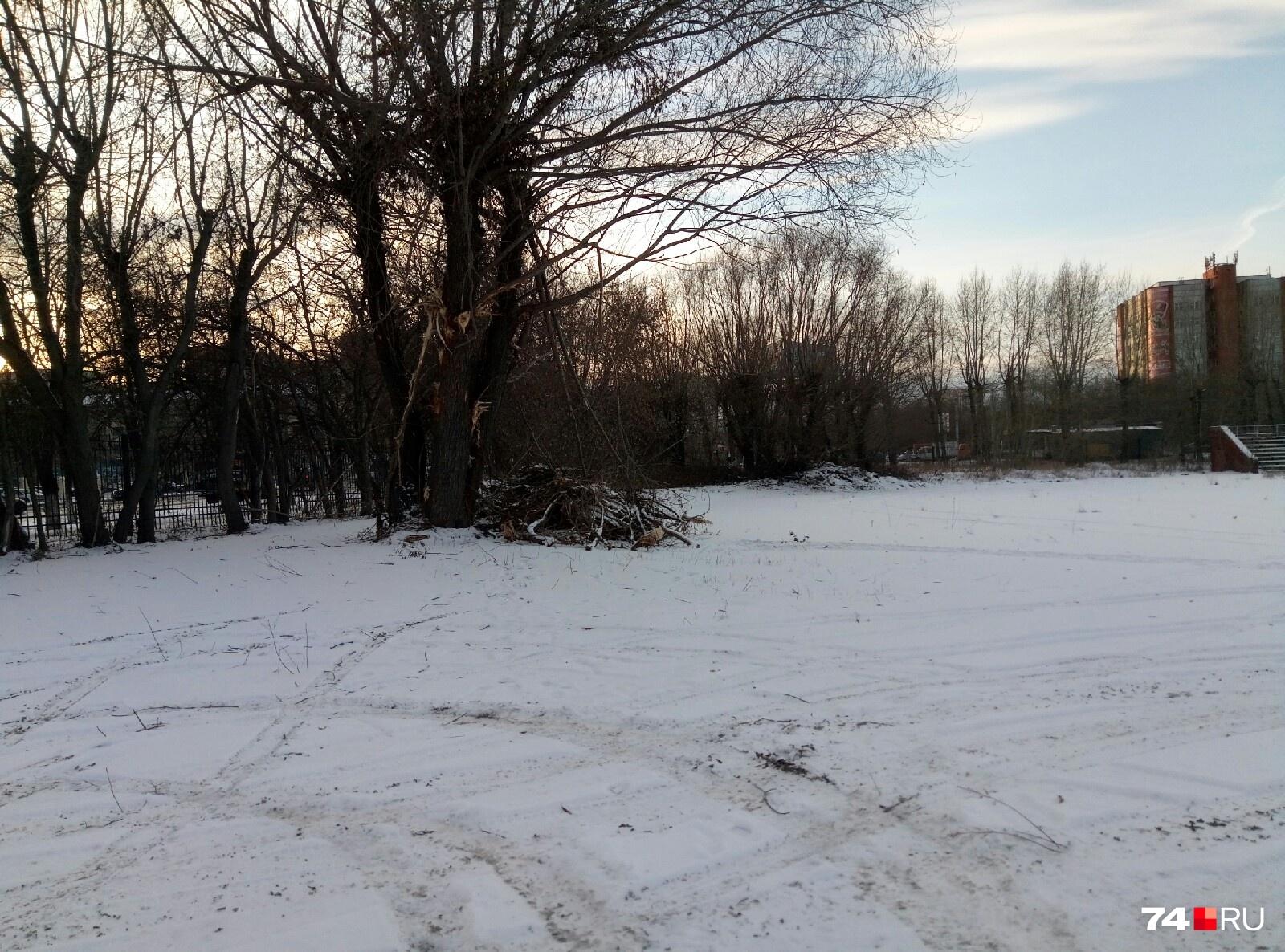 На этой неделе территорию частично очистили от зарослей, и это вселило надежду в местных жителей