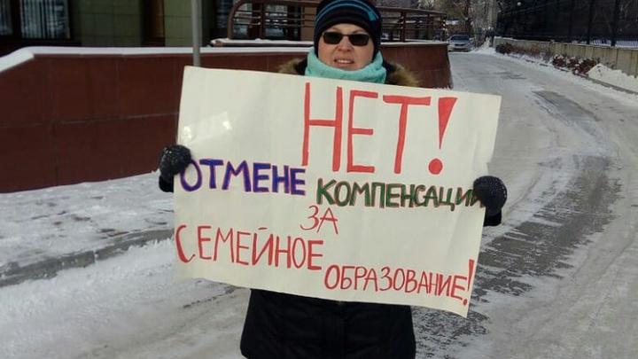 «Замёрзли — не то слово!»: омичи вышли на пикетпротив отмены компенсаций за семейное образование
