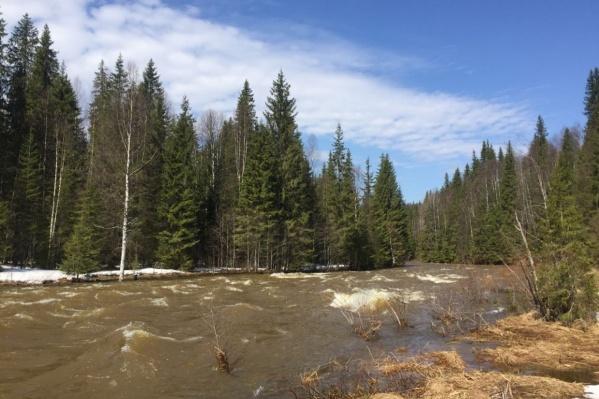 Опытные туристы отмечают, что в этом году реки очень сильно разлились
