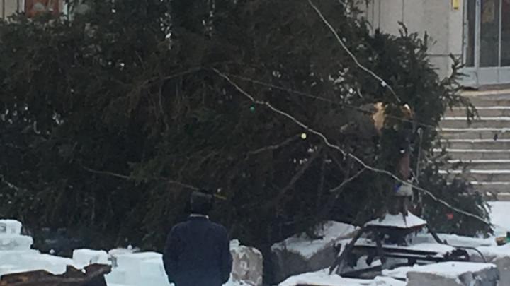 В Башкирии на центральной площади рухнуло новогоднее дерево