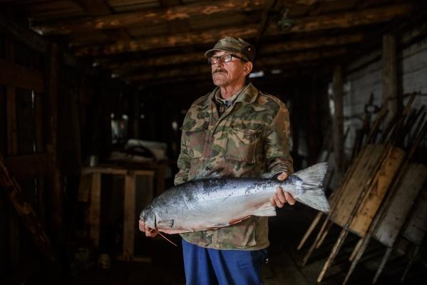 Сотрудник рыболовецкого колхоза в Лопшеньге Сергей Аффоньевич Федотов, который фасует выловленную рыбу под песни группы Rammstein