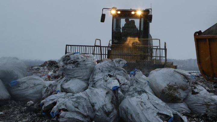 «Ограничить — превысить полномочия»: что о ввозе арктического мусора в Архангельск думает губернатор
