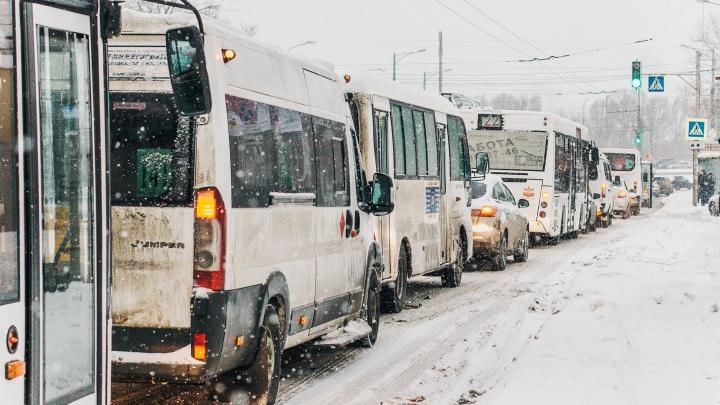 «Провоцируют пробки»: на Московском шоссе ограничат движение межмуниципальных маршрутов