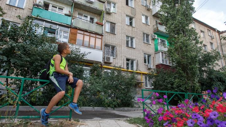 «Хотел девчонок успокоить»: в Волгограде школьник залез на верхушку тополя, чтобы спасти котёнка