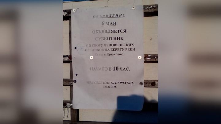 Жителей села в Прикамье позвали на субботник убирать... человеческие останки. Откуда кости?