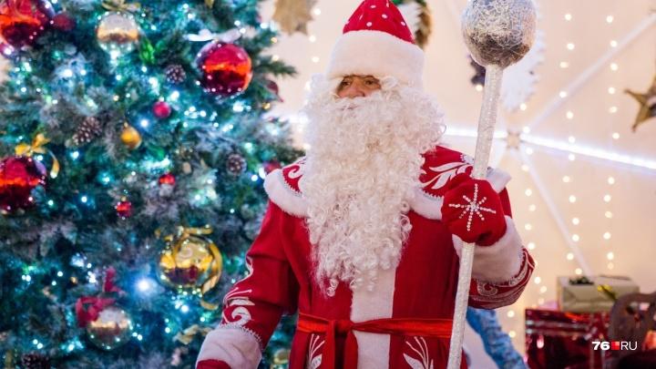 Примерно треть зарплаты: ярославцы рассказали, сколько денег выложили на Новый год
