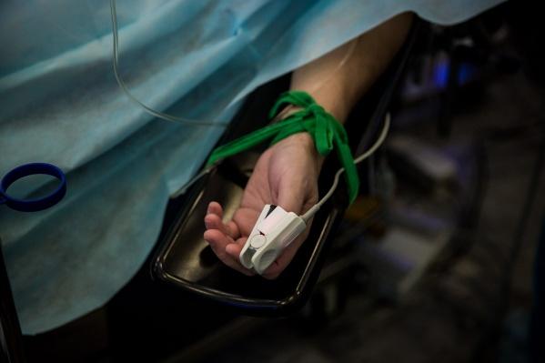 Двое жителей Новосибирской области умерли после покусов клещей в этом году — по данным врачей, они не вакцинировались
