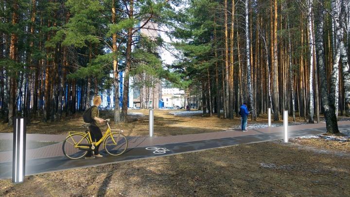 На создание освещенного сквера в березовой роще Студгородка выделено почти 45 миллионов