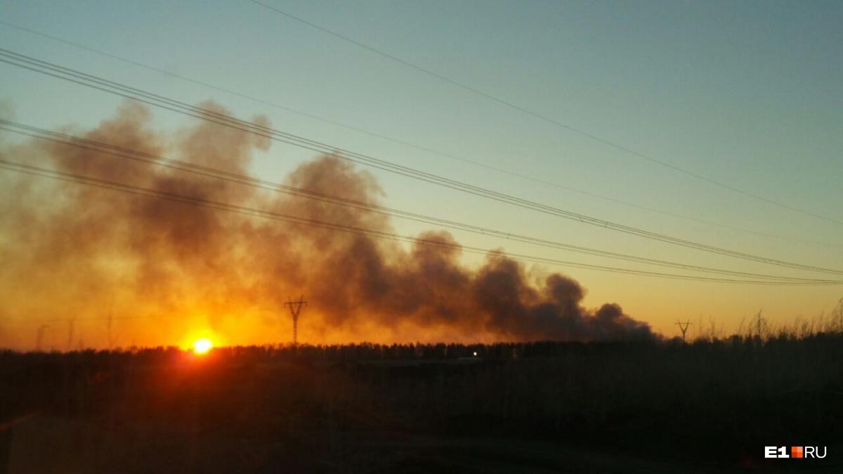 Огонь видно соВторчермета: впосёлке Шабры пылает несанкционированная свалка