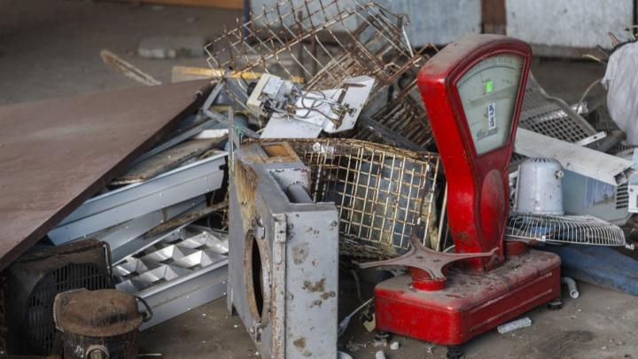 Кормим всех, но не себя: в Волгограде вымирают ярмарки и рынки с фермерской продукцией