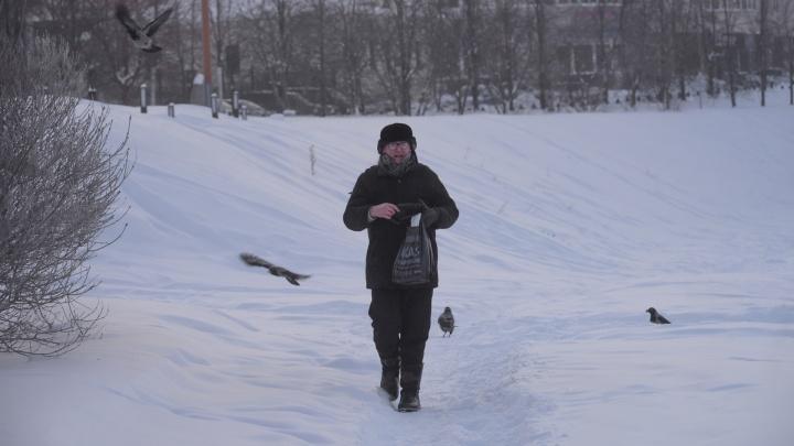 «Птичку жалко»: как екатеринбуржцыв -30 покрываются инеем, кутаются в шарфы и кормят пернатых