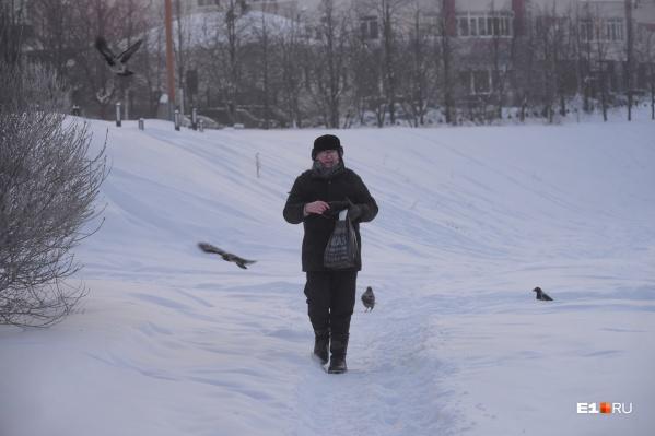 Яков Павлович пришёл на берег Исети покормить птиц