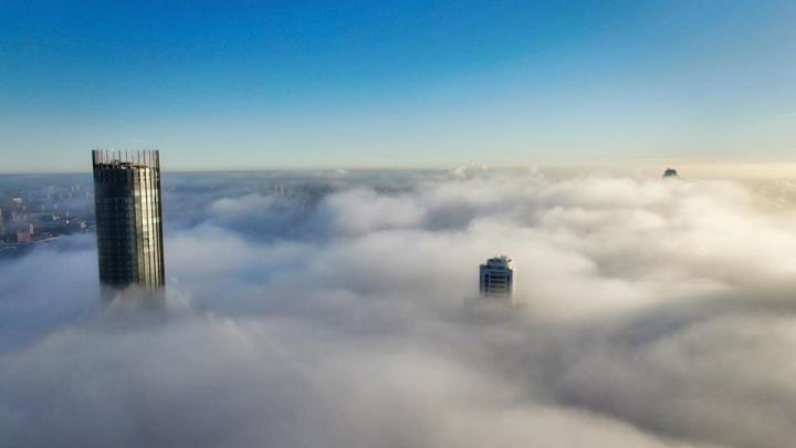 Туманная красота: 8 лучших снимков утреннего тумана, из-за которого не могли сесть самолеты