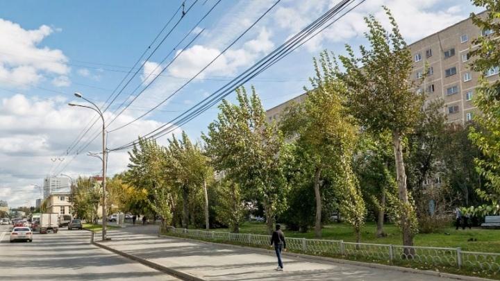 «Сделали большую площадку для автомобилей»: в Екатеринбурге уничтожили еще одну аллею