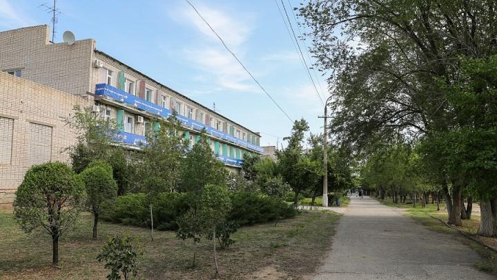 Вертолётная площадка, поликлиника, амфитеатр, бассейны: под Волгоградом хотят построить «Артек»