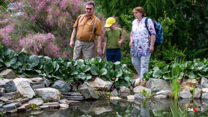Американские цветы и японские карпы: смотрим на Ботанический сад ЧелГУ (осторожно, внутри суслики)