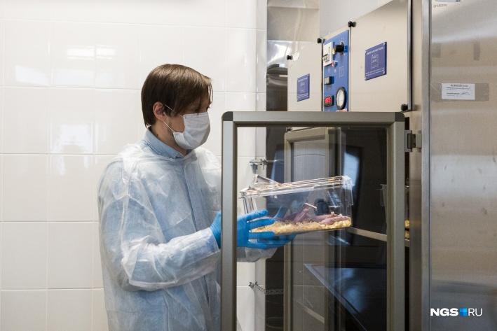 В таких шкафах живут иммунодефицитные мыши — здесь поддерживается нужная температура, да и сама обстановка уберегает их от инфекций<br>