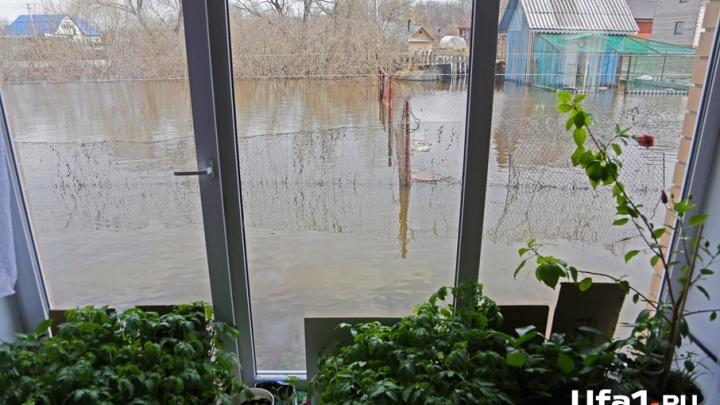 Половодье – 2017: на реках Башкирии уровень воды снизился на полметра и более