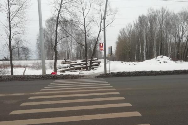 Ярославцы просят властей обратить внимание на мусор