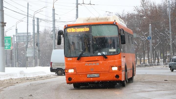 Стало известно, на какие маршруты в Нижнем Новгороде выпустят 74 новых социальных автобуса