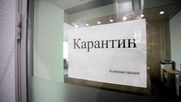 В Челябинске в школах и садиках начали вводить карантин по пневмонии
