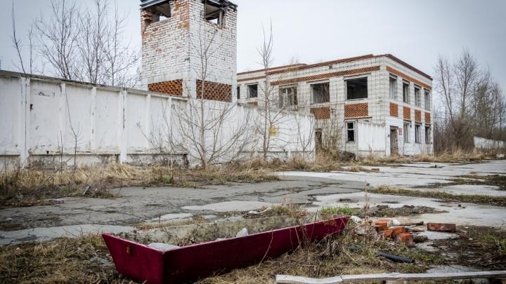 «Мертвый город» под Новосибирском, где жили солдаты-преступники, продали с аукциона