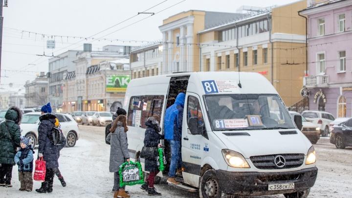 Большие автобусы вместо «Газелей»: в Ярославской области поменяют скандальный транспорт